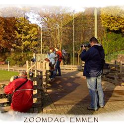 Zoomdag Emmen
