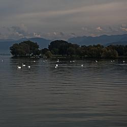 De Bodenzee