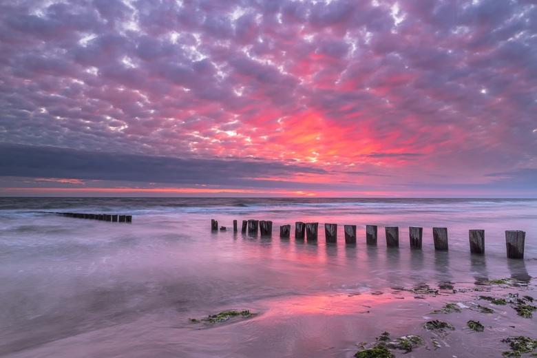Sunset Hollum -