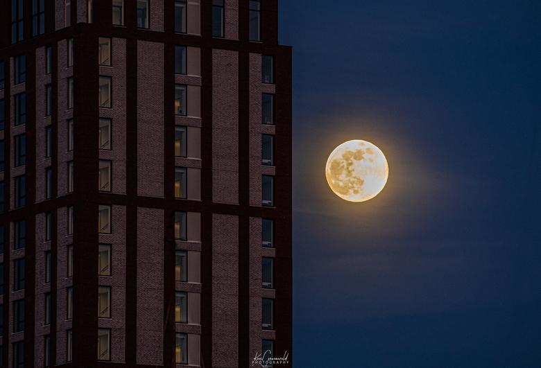 The Moon - De maan kwam gisteren snel op in Reitdiephaven. Prachtig om deze volle maan in het verlengde van de torenflat te zien bij heldere lucht.