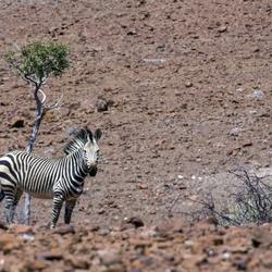 Namibië 81