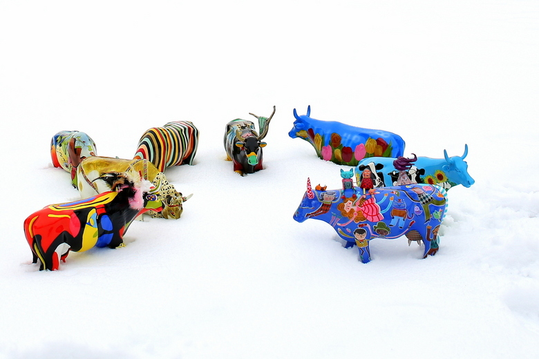 Cow Parade in the Snow