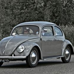 Volkswagen Typ 1 Beetle 1952 (7624)