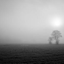 2015 Siriushoeve in de mist