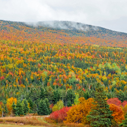 Canada Cabot Trail
