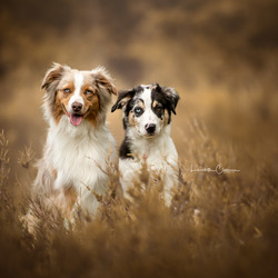 Roxy en Flynn