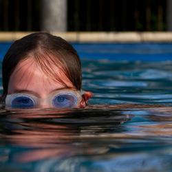 Wat zwemt daar