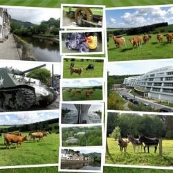 collage  Hauffalize  Ardennen en omg   Mei 2018