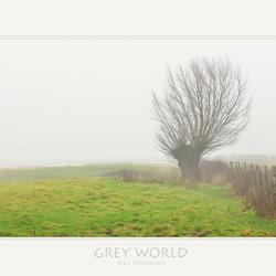 Grey World...