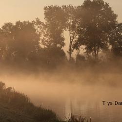 natuur tys damhuis  (119)