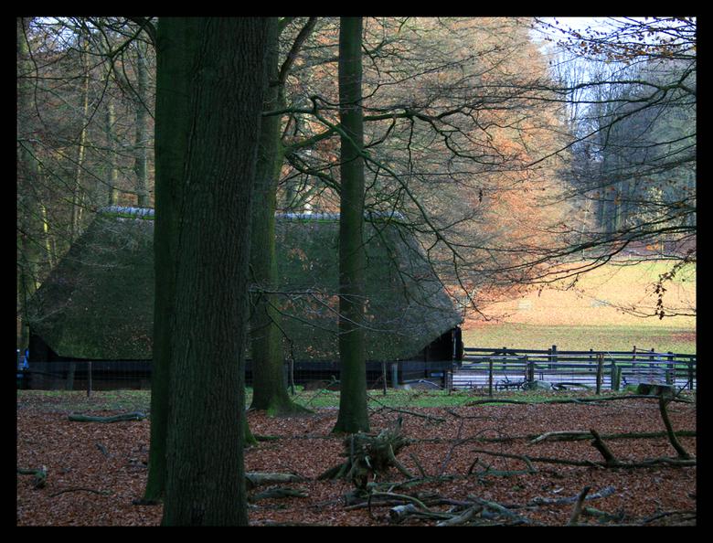 Schaapskooi Rheden - De schaapskooi bij Rheden ligt op een prachtige plek. De lichtval op het weilamd trok mijn aandacht en maakte het beeld voor mij