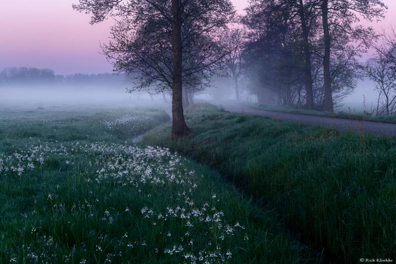 Serene ochtend