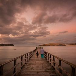 Muriwai Pier