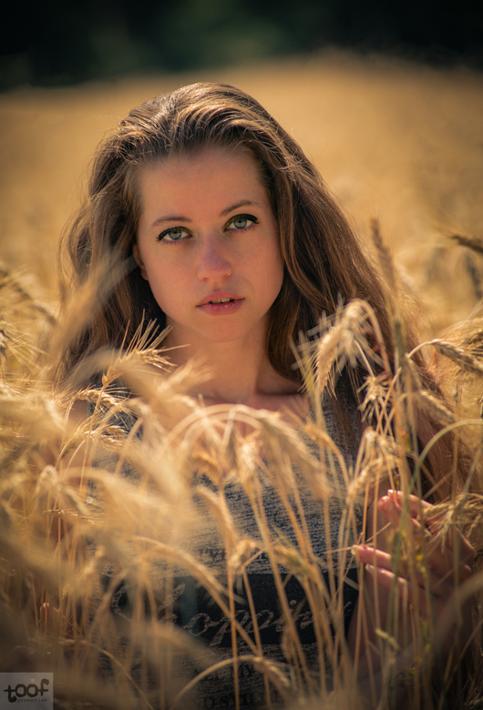 Found in the grain fields...