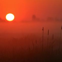 Zachte zonsopgang