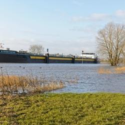 Hoog water in de Rijn