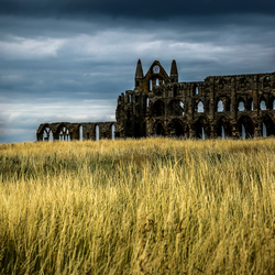 Whitby Abbey, Bram Stokers inspiration