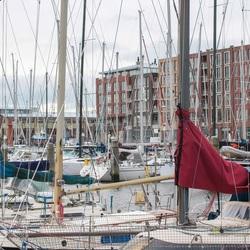 Woud aan masten in de haven van Scheveningen