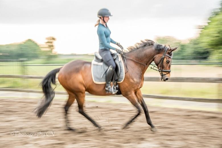 Panning van mijn paardje met ruiter -