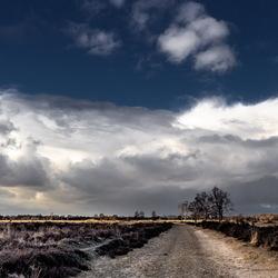 De weg naar Rolde