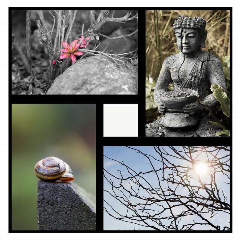 Creatief in de tuin - Canon EOS 600D<br /> Tamron SP 90mm f/2.8 Di Macro VC USD<br /> <br /> Geprobeerd om van verschillende stijlen fotografie één