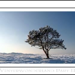 Winterwonderland part III