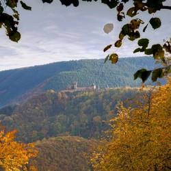 herfst in de Ardennen