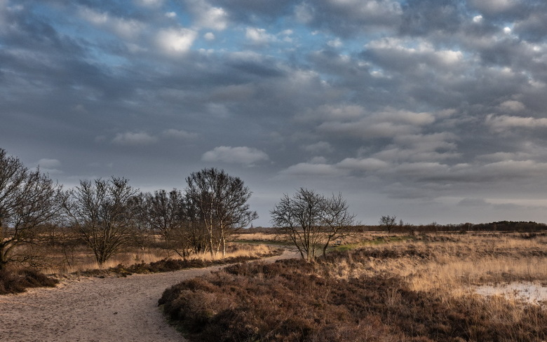 Oude weg naar Rolde - Het Balloërveld is een oerlandschap. Er liggen grafheuvels en er lopen heel oude wegen, van voor de jaartelling