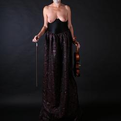 De viool speelster