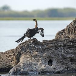 Botswana 17