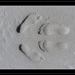 Love on the Beach*