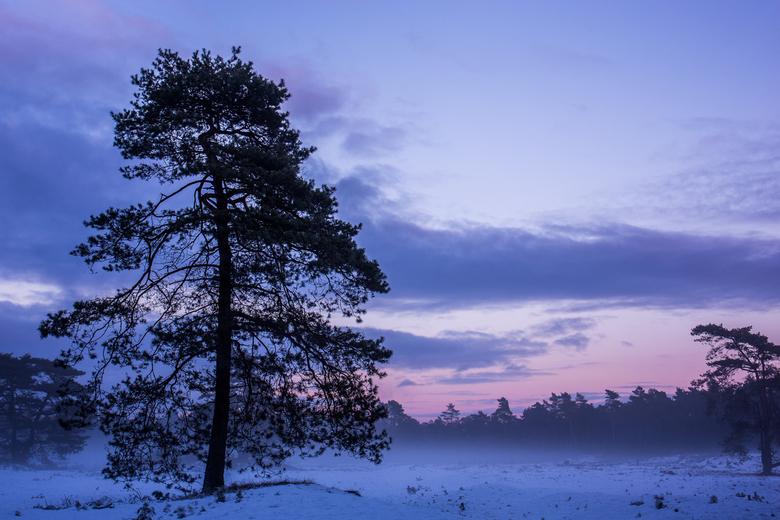 Zonsondergang op winterse Veluwe - Soms heb ik het gevoel dat ik enorme mazzel heb als ik dit soort momenten mag vastleggen! Aan het eind van een wint