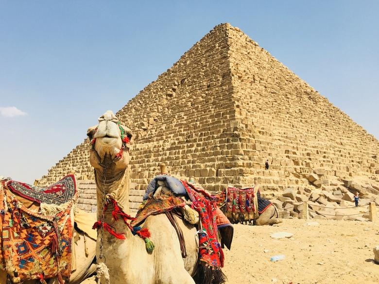 Can we have a pose? - Tijdens de meest warme dag in Cairo is deze foto gemaakt voor de onwaarschijnlijk mooie piramide! De kameel op de voorgrond en d