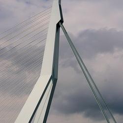 Rotterdam 29.