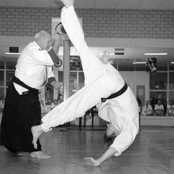 Demonstratie Aikido