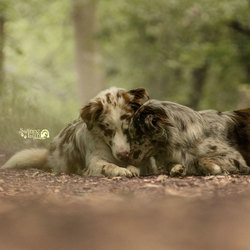 broer en zus knuffel