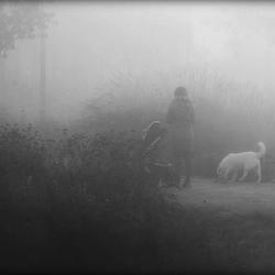 De mist in gaan...