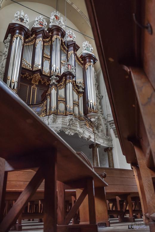 Orgel - Grote Kerk Dordrecht - Tussen de banken vandaan rijst daar het grote Kam-orgel op. In de Grote Kerk te Dordrecht.