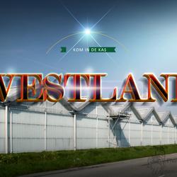 Mooi westland