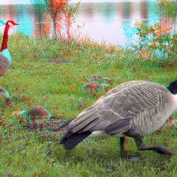 Kell am See Germany 3D
