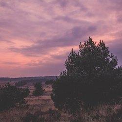 Roodpaarse zonsondergang bij Hoog Soeren