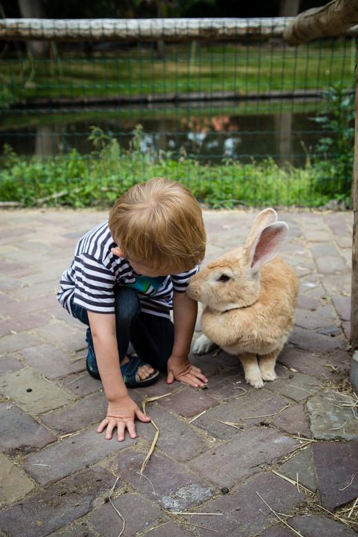 Cute -