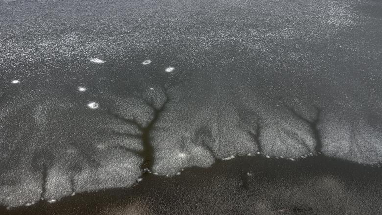 I C Trees - Vanochtend vroeg naar Saure voor landschap maar zag toen ik langs het water liep bevroren scheuren die op bomen leken.<br /> bedankt voor