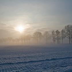 Winter akker