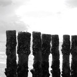 aan de kust 2