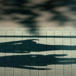 Sun and shadow.