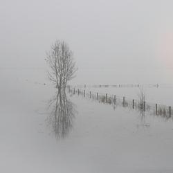 Misty dawn