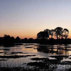 waterlandschap in de vroege ochtend