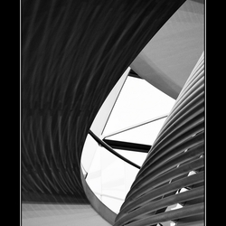 Lines in black 'n white 2