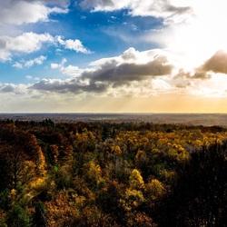 Utrechtse Heuvelrug in herfst